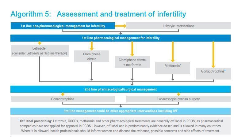 PCOS Fertility Drugs
